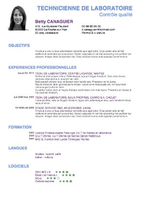 Curriculum Vitae Eleve De 3eme Laboite Cv Fr