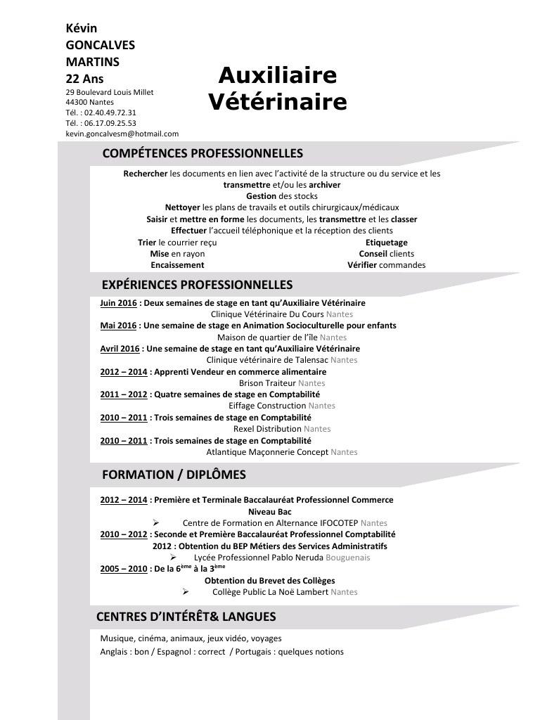 comment faire un cv veterinaire